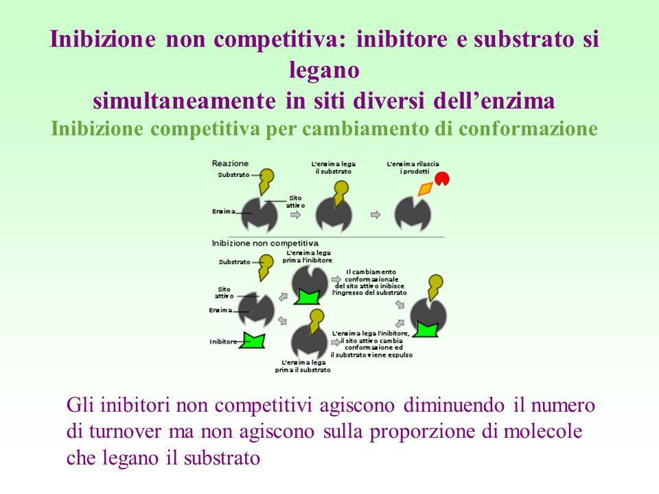 Inibizione non competitiva: inibitore e substrato si legano