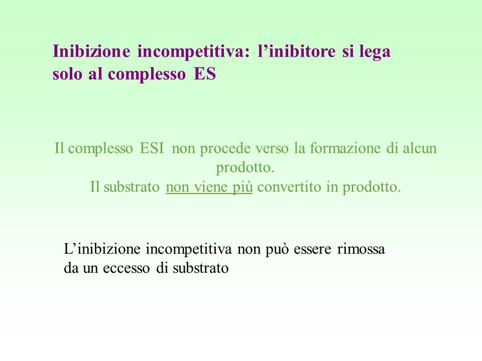 Inibizione incompetitiva: l'inibitore si lega solo al complesso ES
