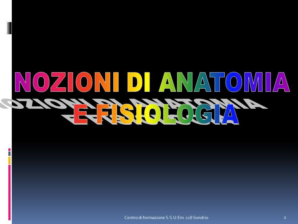 NOZIONI DI ANATOMIA E FISIOLOGIA