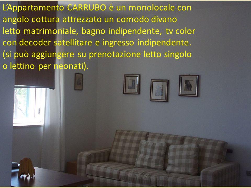L'Appartamento CARRUBO è un monolocale con angolo cottura attrezzato un comodo divano letto matrimoniale, bagno indipendente, tv color con decoder satellitare e ingresso indipendente.