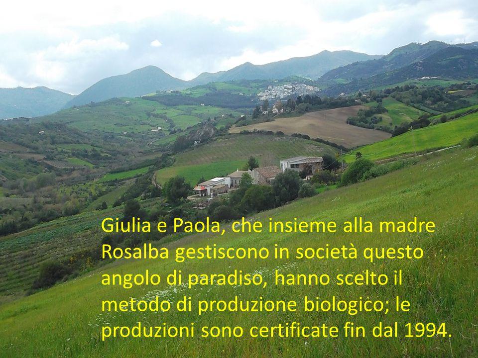 Giulia e Paola, che insieme alla madre Rosalba gestiscono in società questo angolo di paradiso, hanno scelto il metodo di produzione biologico; le produzioni sono certificate fin dal 1994.