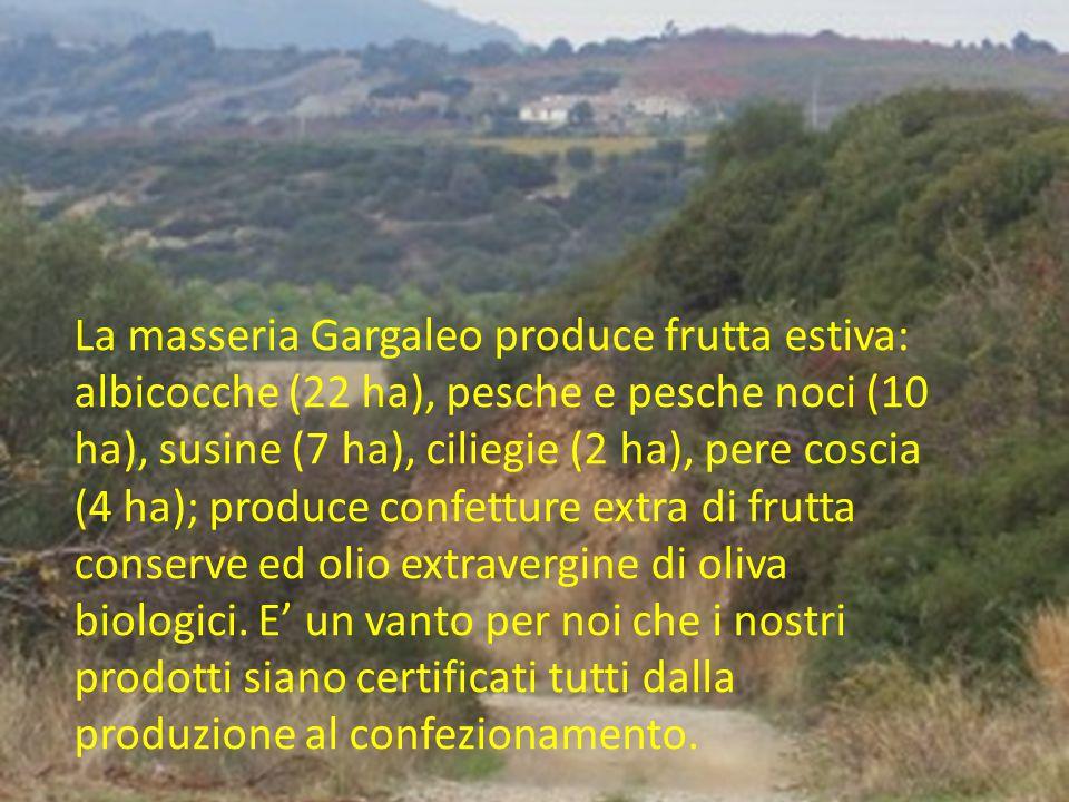 La masseria Gargaleo produce frutta estiva: albicocche (22 ha), pesche e pesche noci (10 ha), susine (7 ha), ciliegie (2 ha), pere coscia (4 ha); produce confetture extra di frutta conserve ed olio extravergine di oliva biologici.