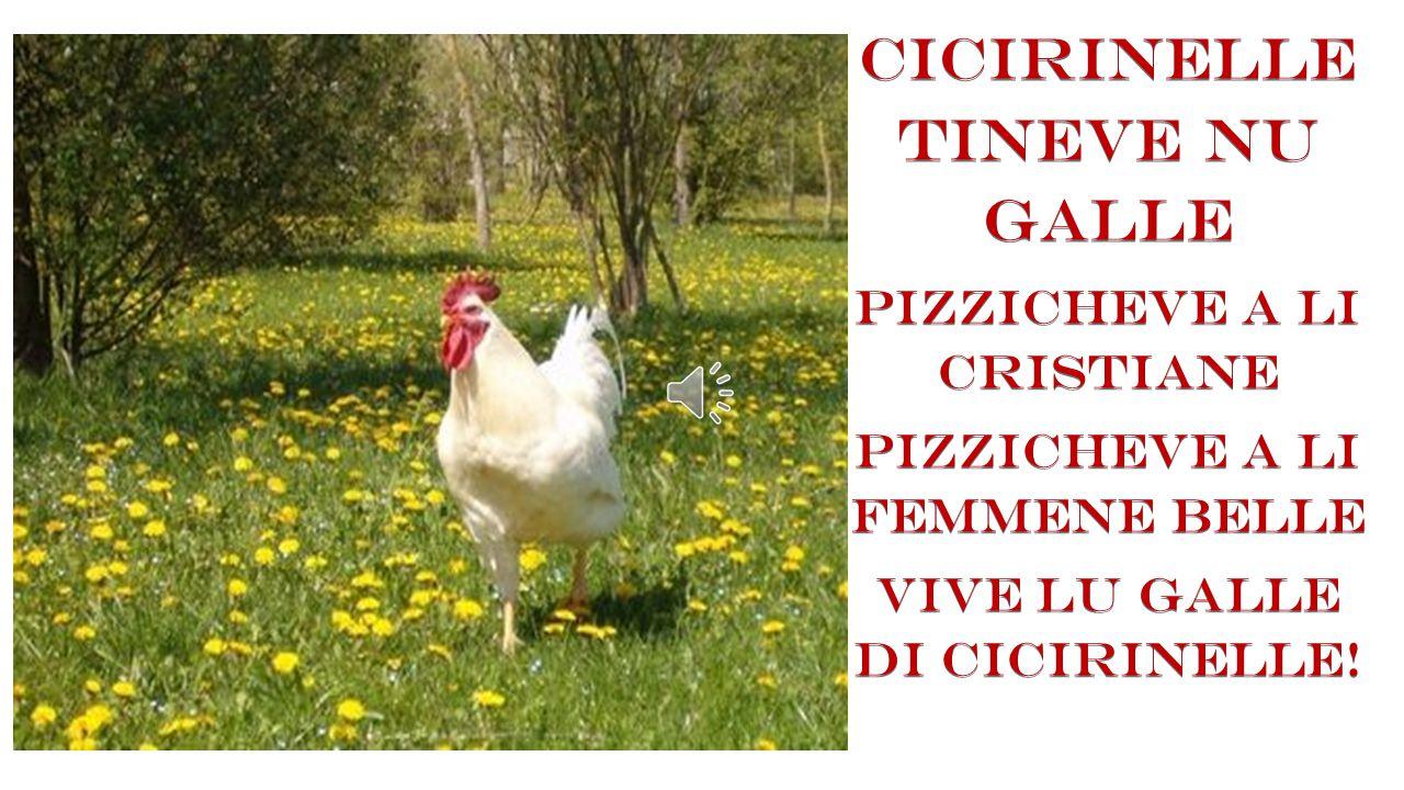 CICIRINELLE TINEVE NU GALLE