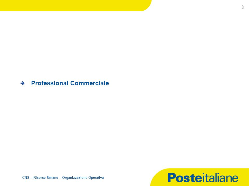 Professional Commerciale