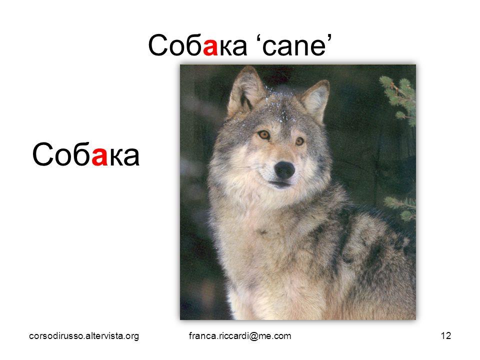 Собака Собака 'cane' corsodirusso.altervista.org