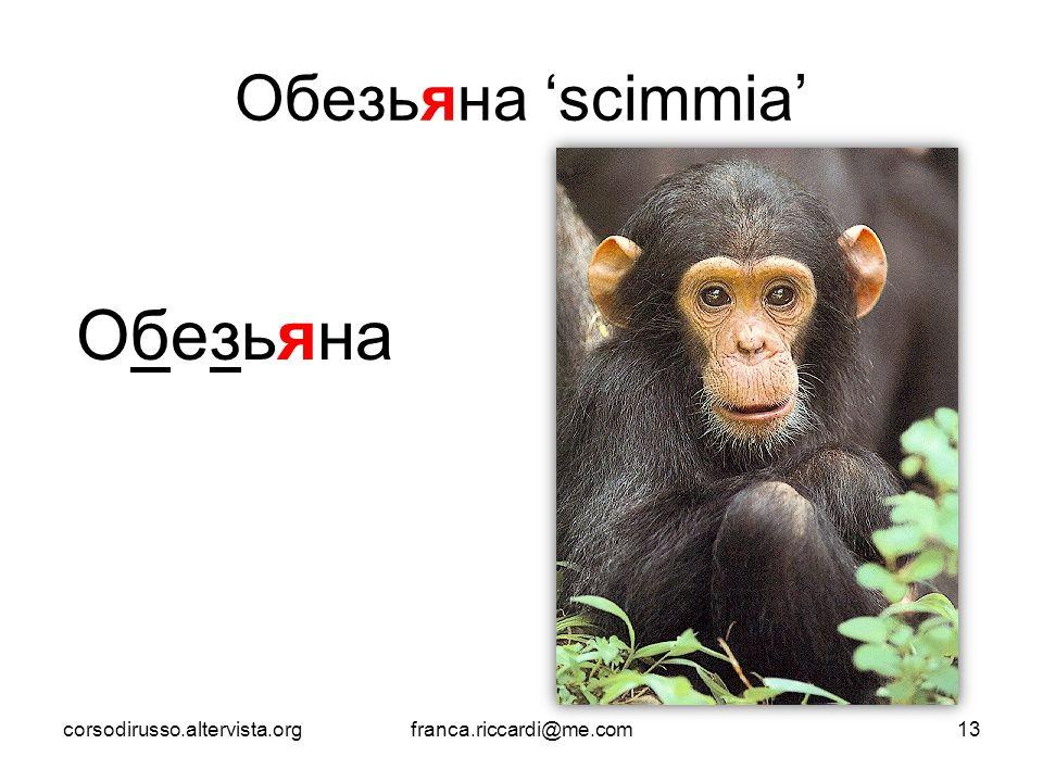 Обезьяна Обезьяна 'scimmia' corsodirusso.altervista.org