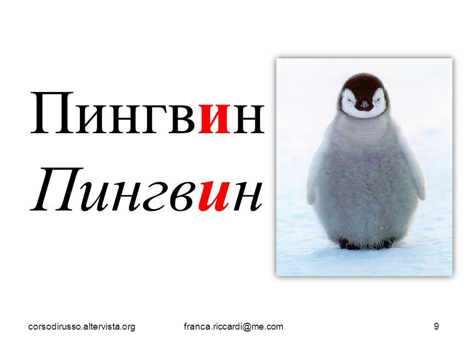Пингвин corsodirusso.altervista.org franca.riccardi@me.com