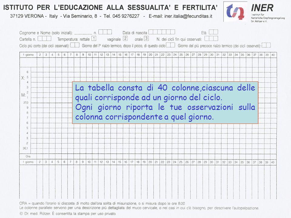 La tabella consta di 40 colonne,ciascuna delle quali corrisponde ad un giorno del ciclo.