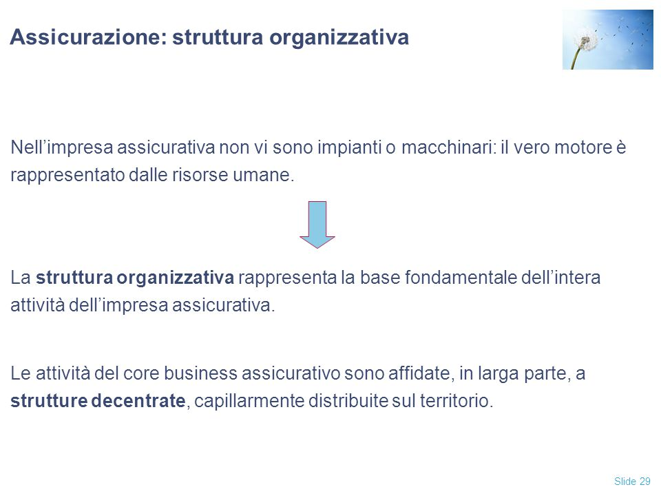 Assicurazione: struttura organizzativa