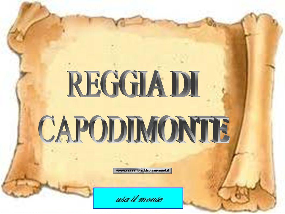 REGGIA DI CAPODIMONTE usa il mouse