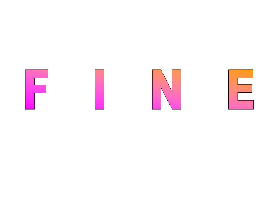 F I N E