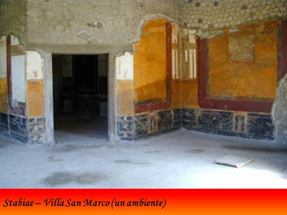 Stabiae – Villa San Marco (un ambiente)