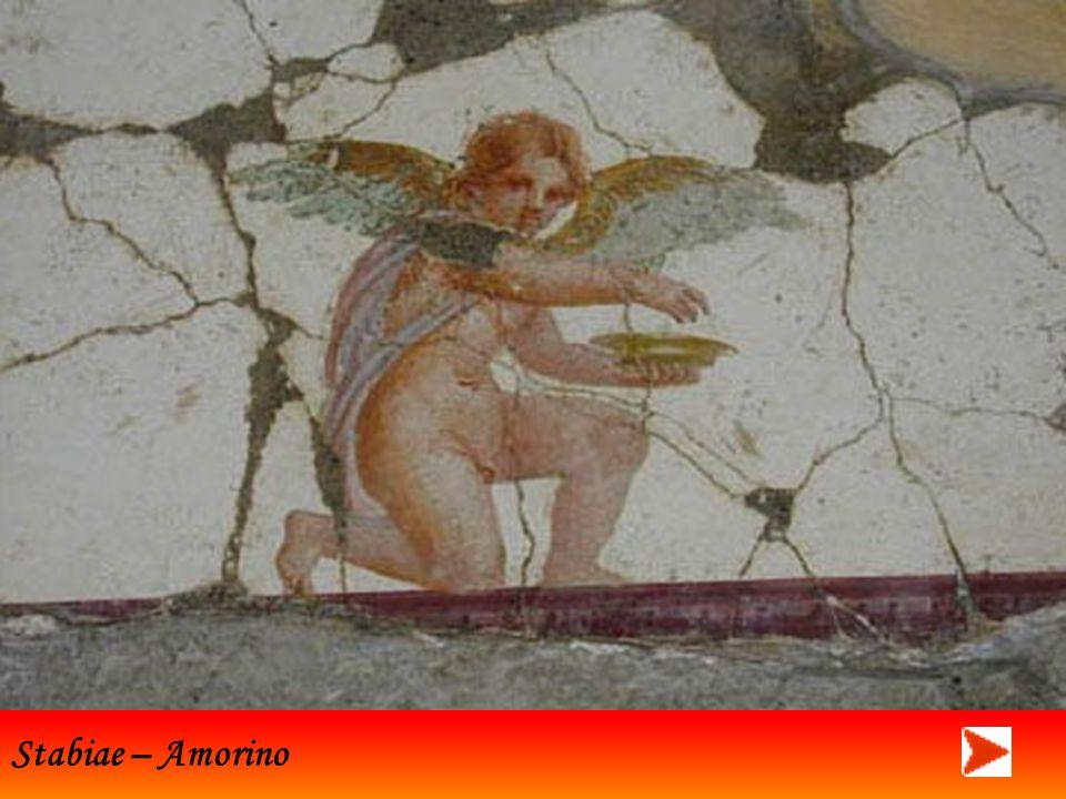 Stabiae – Amorino
