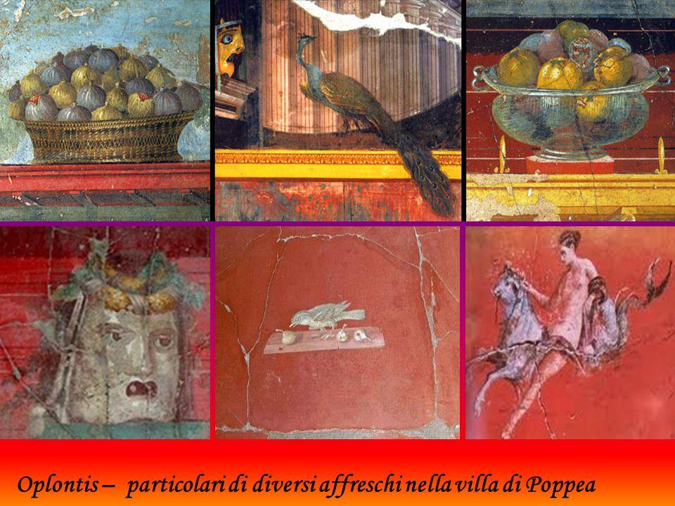Oplontis – particolari di diversi affreschi nella villa di Poppea