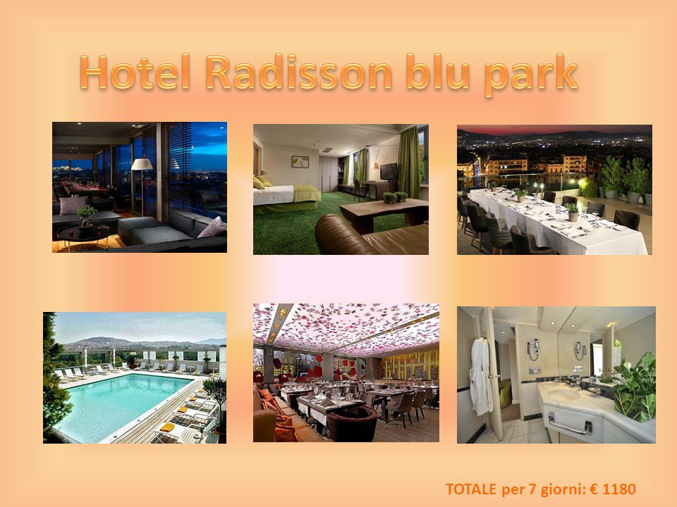 Hotel Radisson blu park