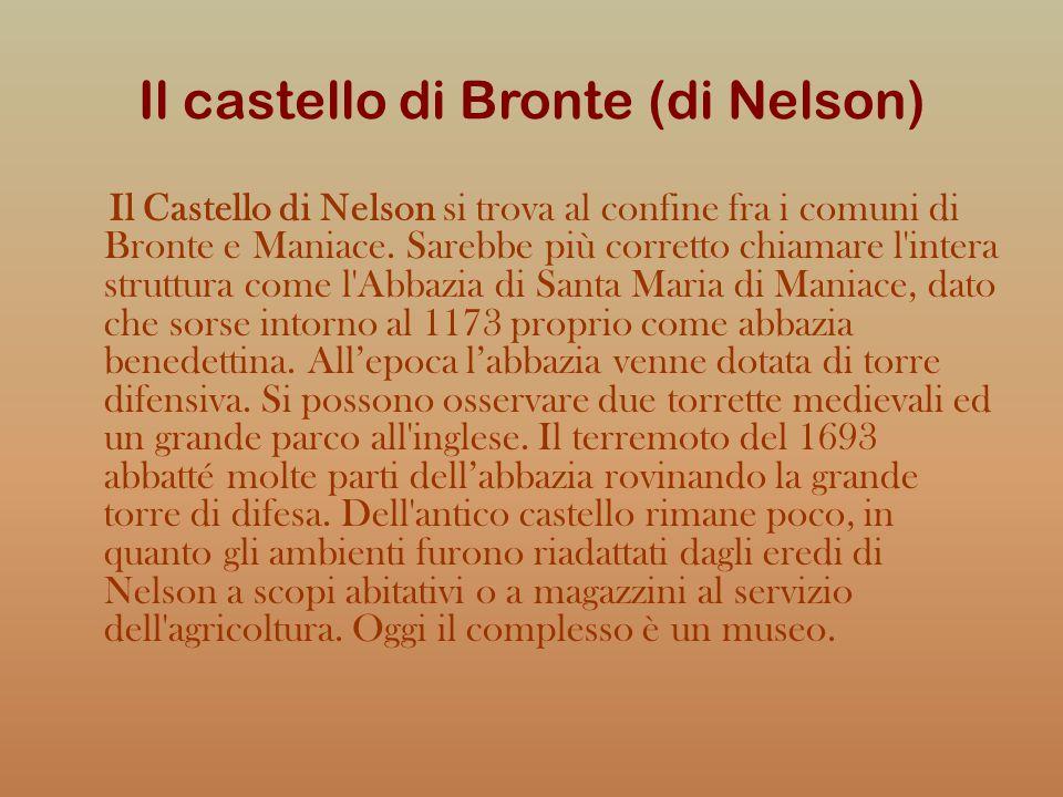 Il castello di Bronte (di Nelson)