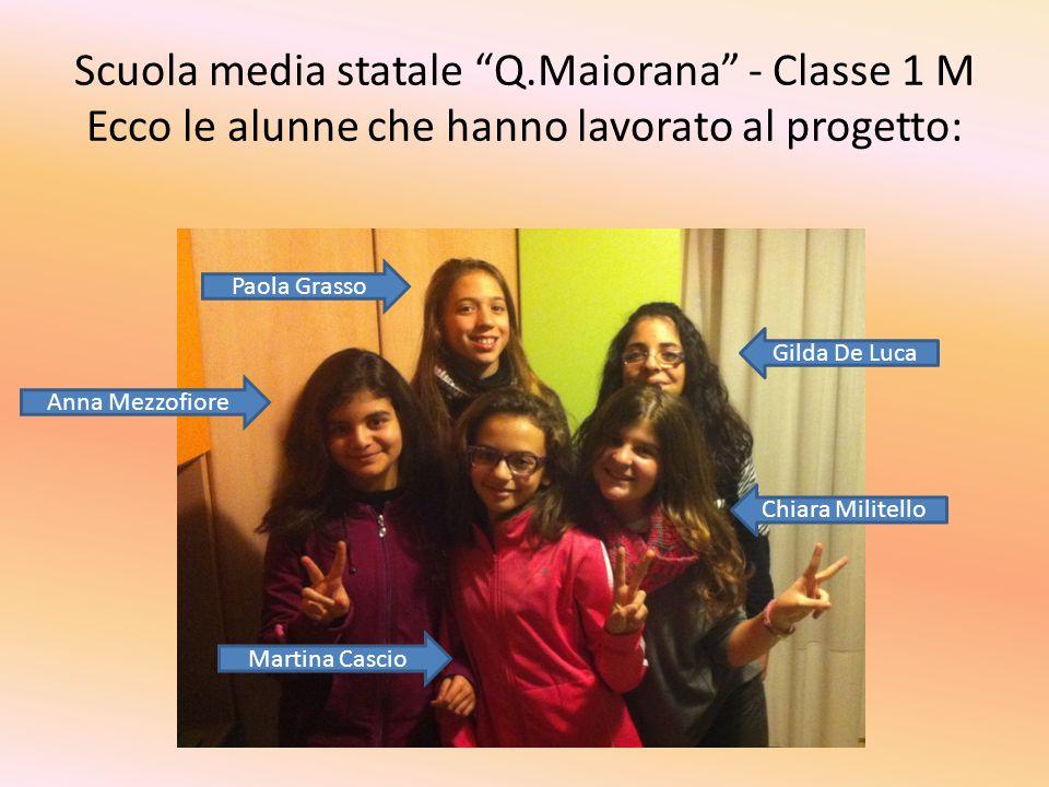 Scuola media statale Q