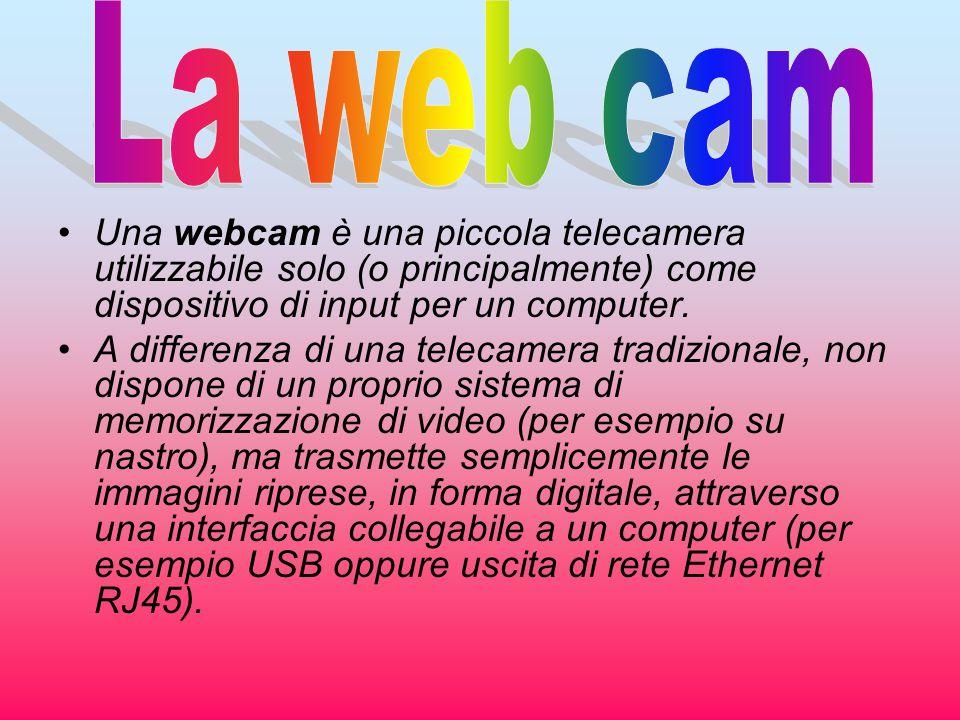 La web cam Una webcam è una piccola telecamera utilizzabile solo (o principalmente) come dispositivo di input per un computer.