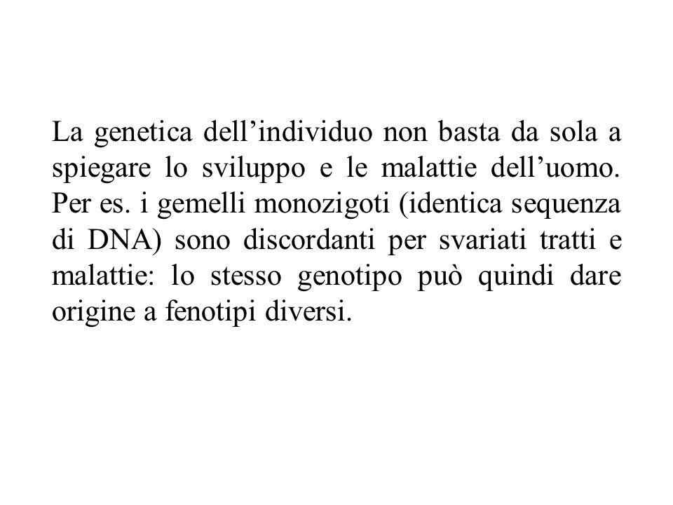 La genetica dell'individuo non basta da sola a spiegare lo sviluppo e le malattie dell'uomo.