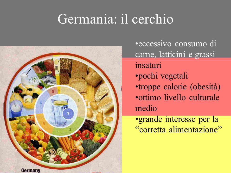 Germania: il cerchio eccessivo consumo di carne, latticini e grassi insaturi. pochi vegetali. troppe calorie (obesità)