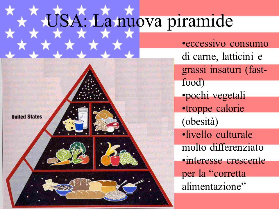 USA: La nuova piramide eccessivo consumo di carne, latticini e grassi insaturi (fast-food) pochi vegetali.