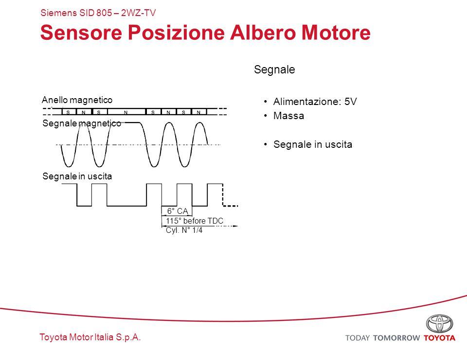Sensore Posizione Albero Motore