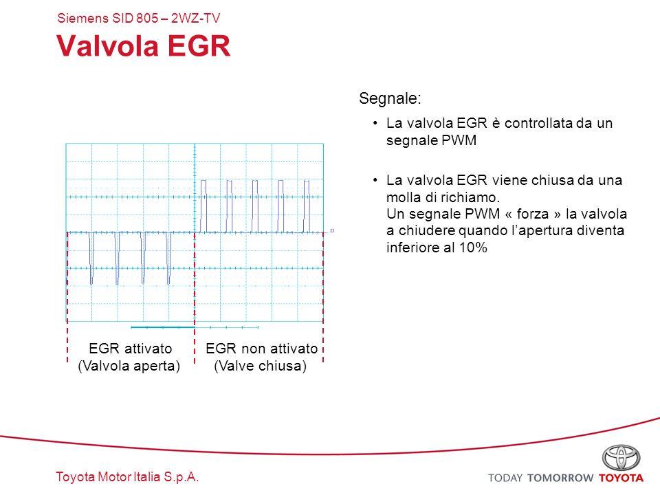 Valvola EGR Segnale: La valvola EGR è controllata da un segnale PWM