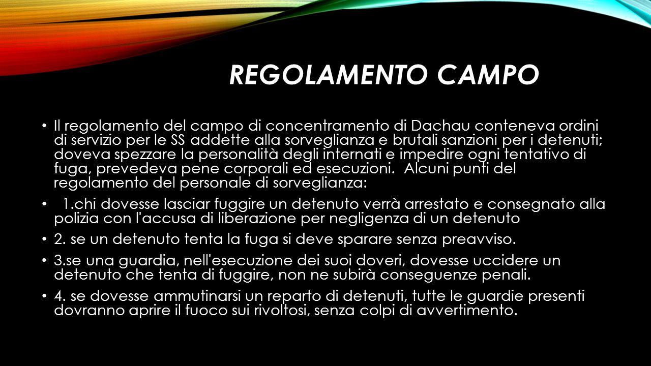 REGOLAMENTO CAMPO