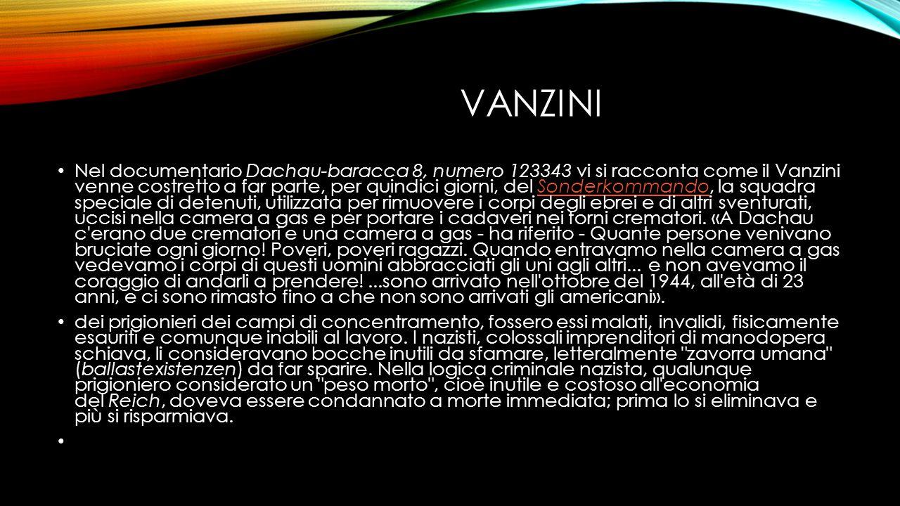 vanzini