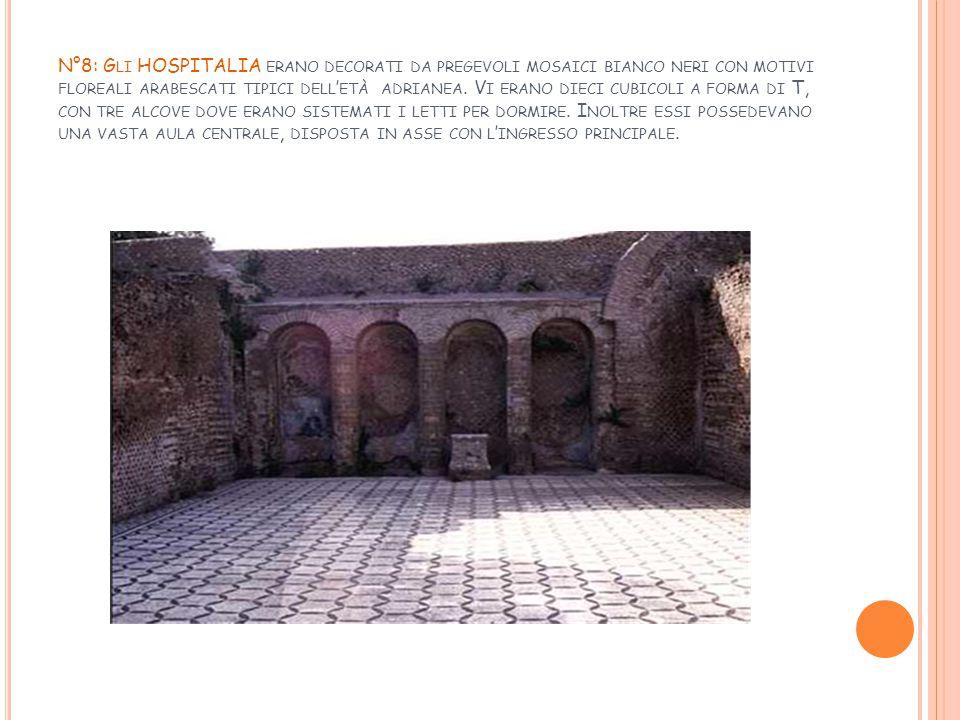 N°8: Gli HOSPITALIA erano decorati da pregevoli mosaici bianco neri con motivi floreali arabescati tipici dell'età adrianea.