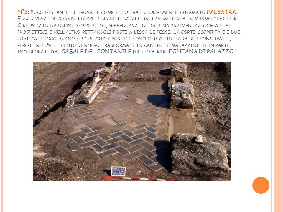 N°2: Poco distante si trova il complesso tradizionalmente chiamato PALESTRA.