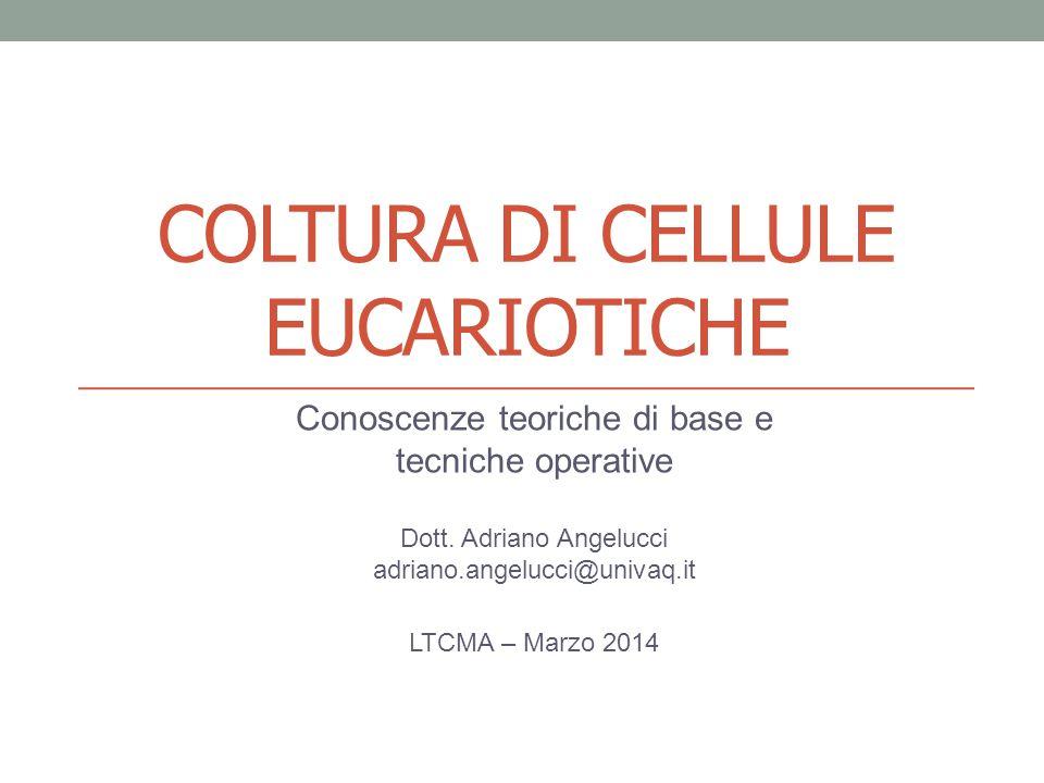 COLTURA DI CELLULE EUCARIOTICHE