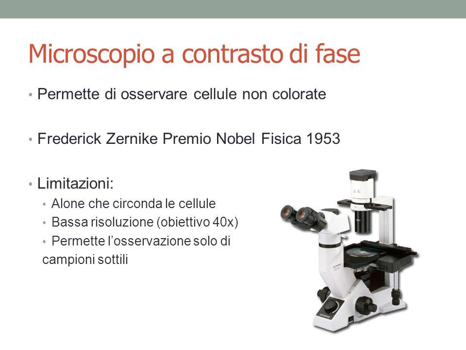 Microscopio a contrasto di fase