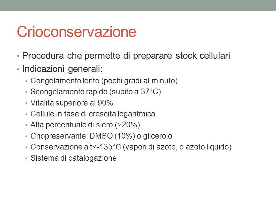 Crioconservazione Procedura che permette di preparare stock cellulari
