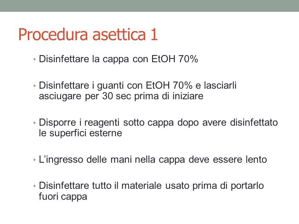Procedura asettica 1 Disinfettare la cappa con EtOH 70%