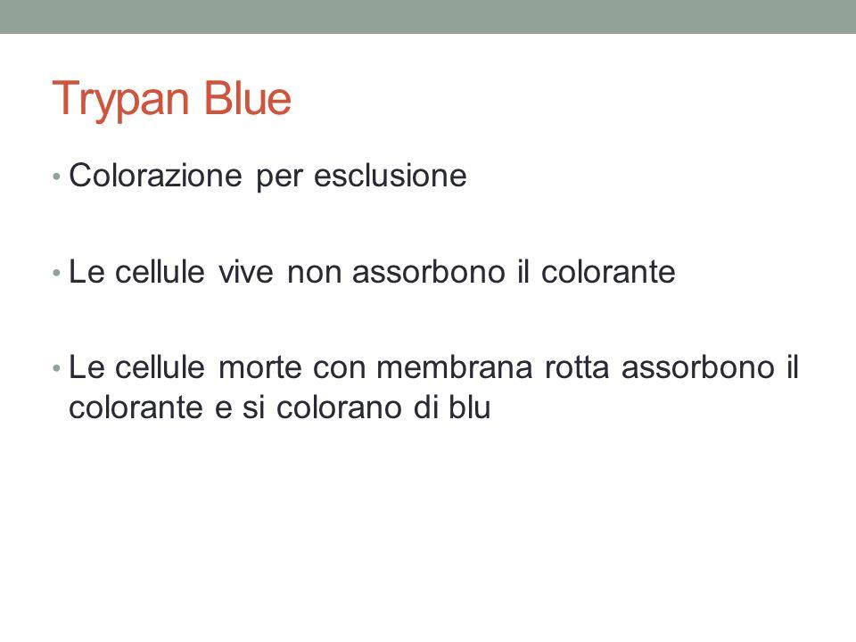 Trypan Blue Colorazione per esclusione