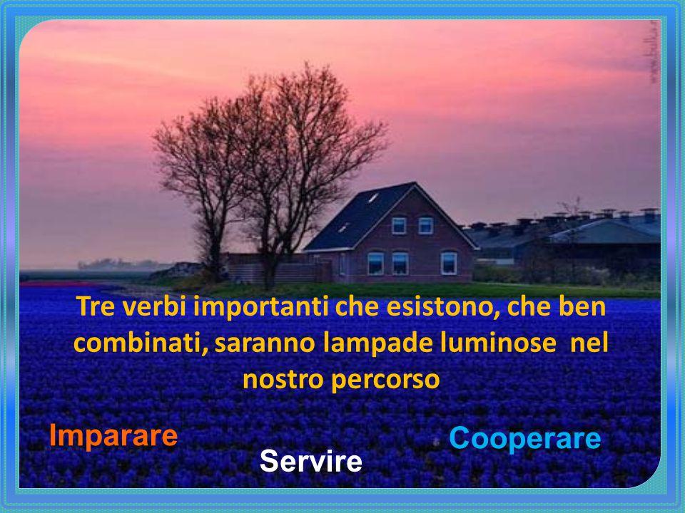 Tre verbi importanti che esistono, che ben combinati, saranno lampade luminose nel nostro percorso