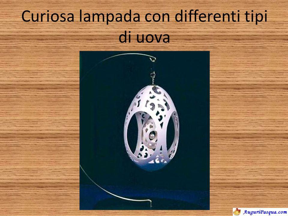 Curiosa lampada con differenti tipi di uova