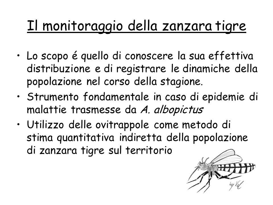 Il monitoraggio della zanzara tigre