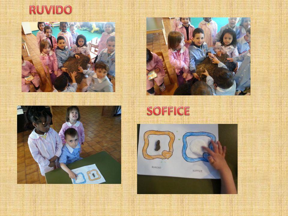 RUVIDO SOFFICE