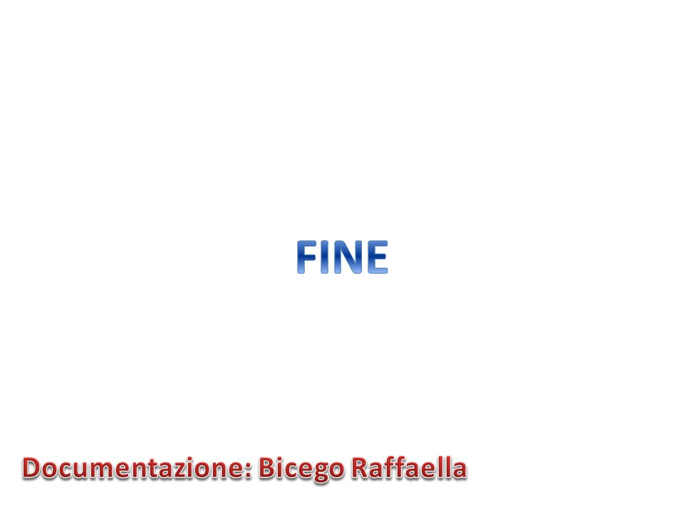 Documentazione: Bicego Raffaella
