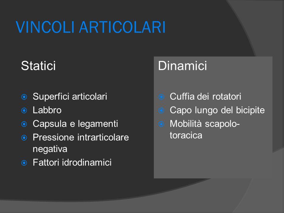 VINCOLI ARTICOLARI Statici Dinamici Superfici articolari Labbro
