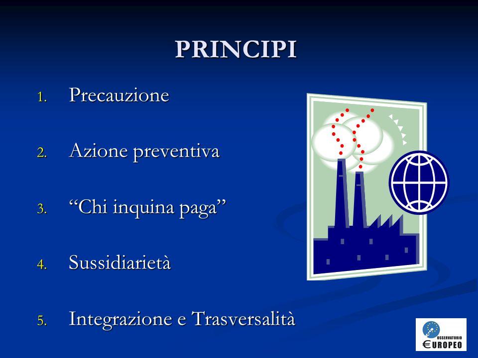 PRINCIPI Precauzione Azione preventiva Chi inquina paga