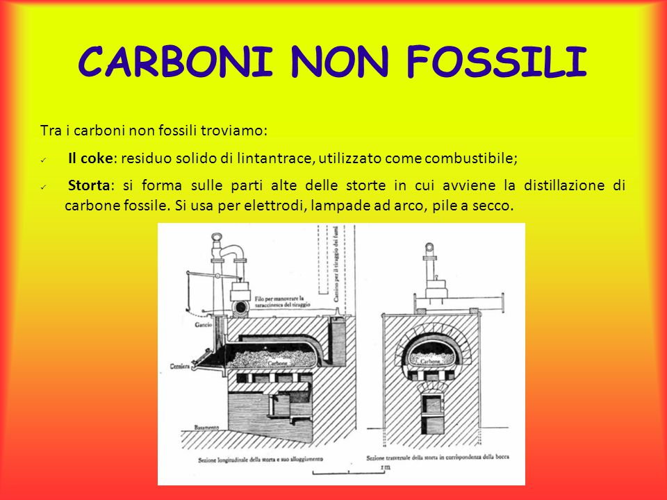 CARBONI NON FOSSILI Tra i carboni non fossili troviamo:
