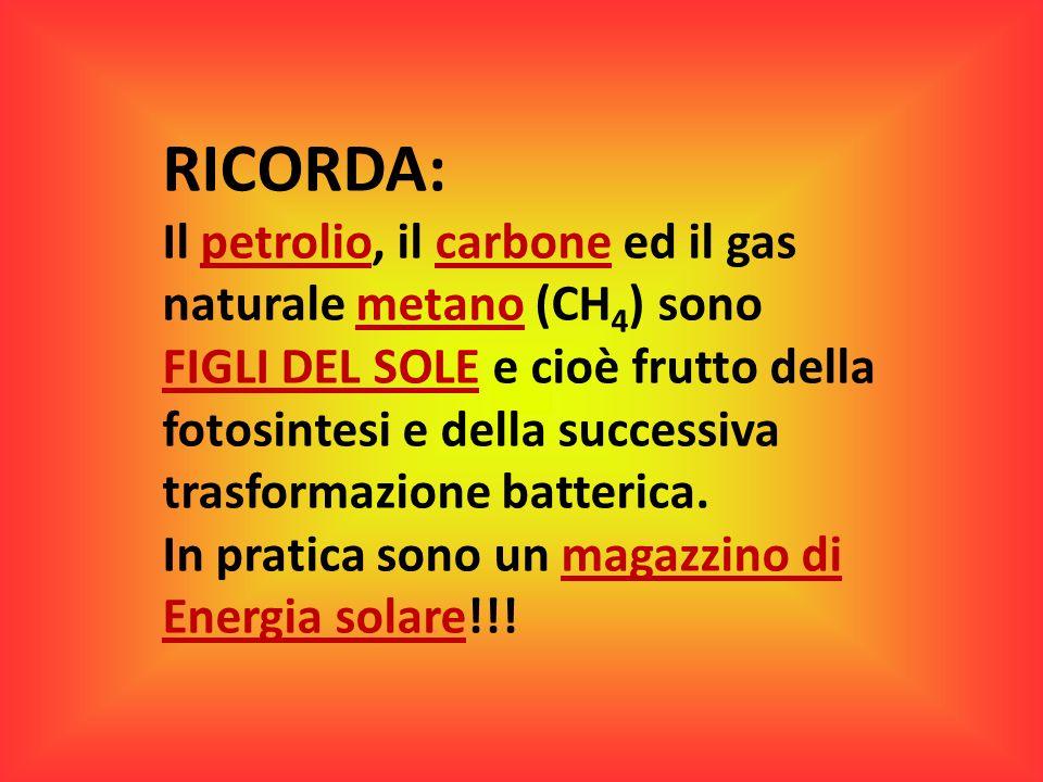 RICORDA: Il petrolio, il carbone ed il gas naturale metano (CH4) sono