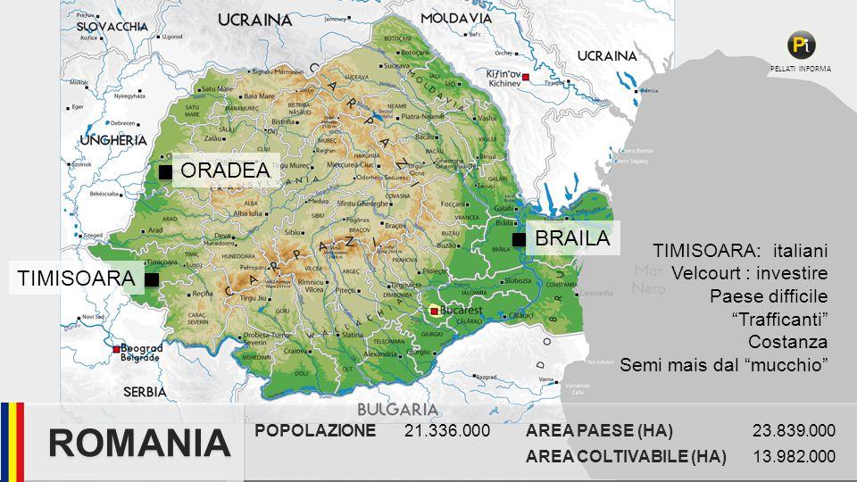 ROMANIA ORADEA BRAILA TIMISOARA TIMISOARA: italiani
