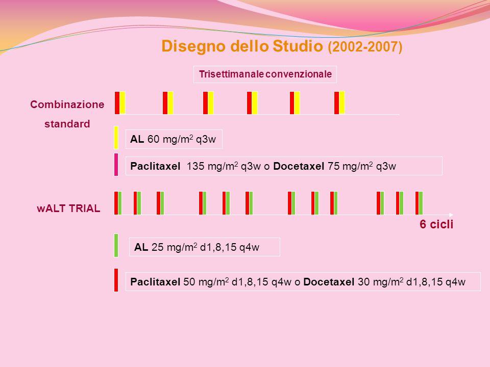 Disegno dello Studio (2002-2007)