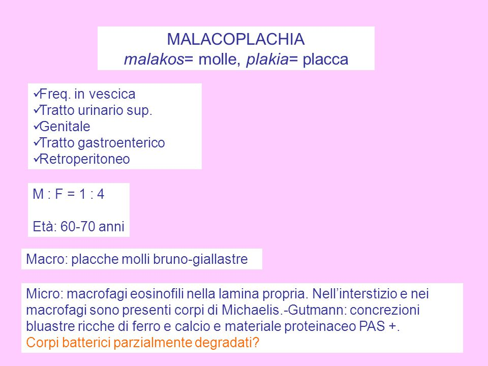 malakos= molle, plakia= placca