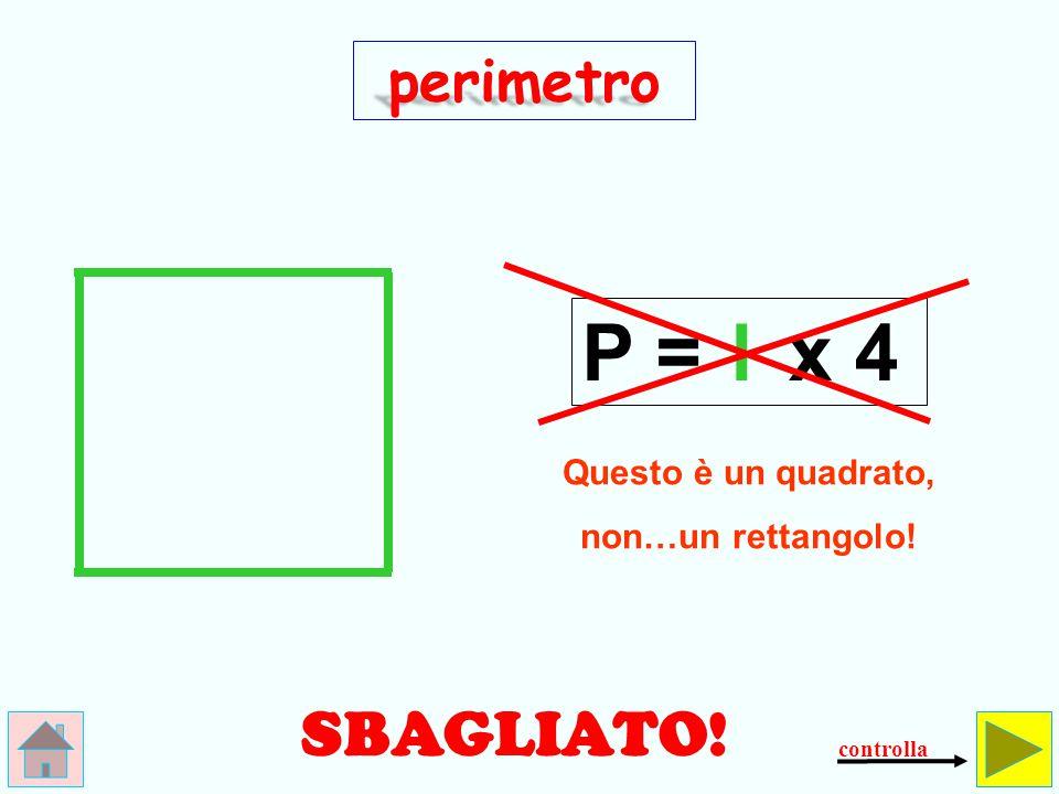 P = l x 4 SBAGLIATO! perimetro Questo è un quadrato,