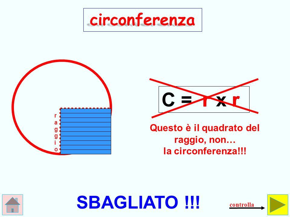 Questo è il quadrato del raggio, non… la circonferenza!!!